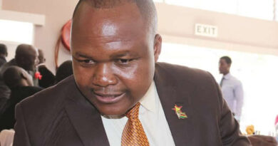 I am sorry for working for ZANU PF - Dr Gandawa